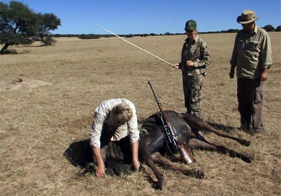 vanatoare-in-namibia