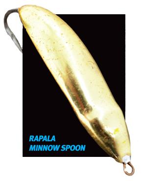 rapala minnow