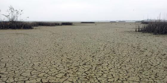lac-secat