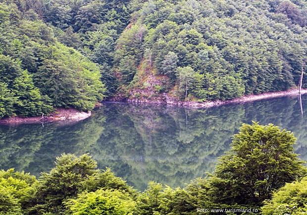 lacul-valea-lui-iovan-valea-cernei-5