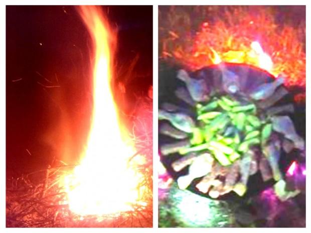 3.Foc